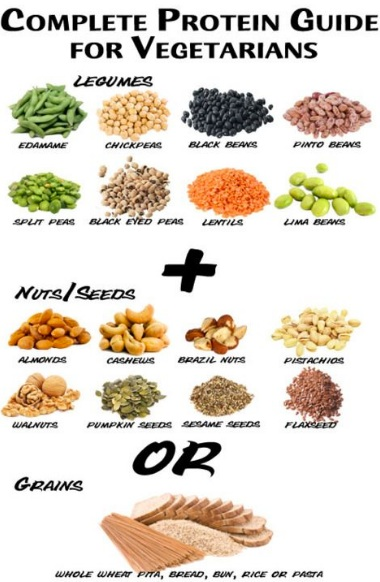 Chart Showing How Vegetarians Must Combine Foods To Get The Right Quality Of Protein