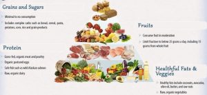 Copy of Dr Mercol's food pyramid for optimum health